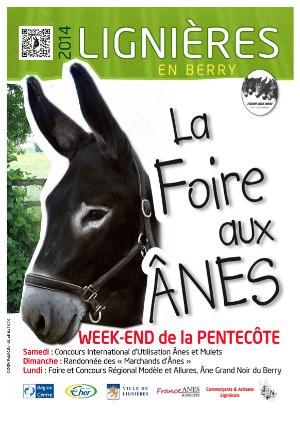 Foire aux Ânes à Lignières en Berry (18), du samedi 07 au lundi 09 juin 2014