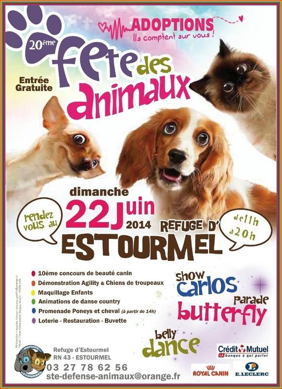 20 ème Fête des animaux à Estourmel (59), le dimanche 22 juin 2014