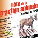 Fête de la traction animale à Mandray (88), du samedi 05 au dimanche 06 juillet 2014
