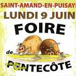 Foire de Pentecôte à Saint Amand en Puisaye (58), le lundi 09 juin 2014