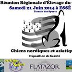 3ème Réunion Régionale d'Elevage (exposition canine)du CFCNSJ à Essé (35), le samedi 21 juin 2014