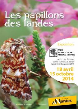 """Exposition """"papillons des landes"""" à Nantes (44), du 18 avril au 12 octobre 2014"""