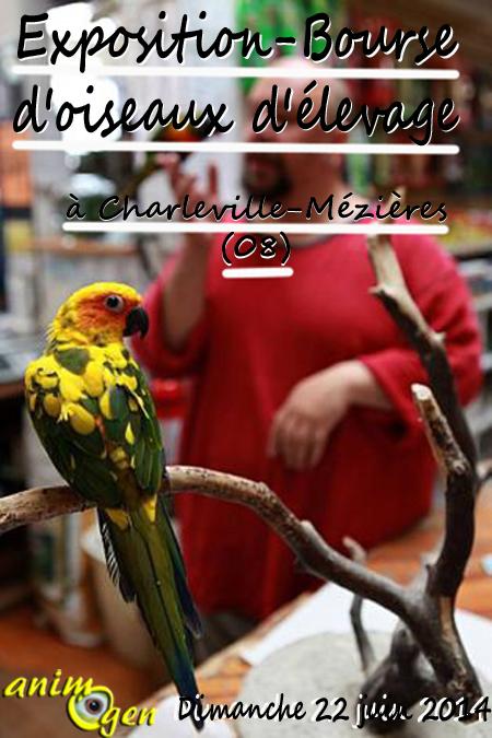 Exposition-Bourse d'oiseaux d'élevage à Charleville-Mézières (08), le dimanche 22 juin 2014
