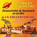Démonstration de fauconnerie en vol libre à la Couvertoirade (12) du 12 juillet au 21 septembre 2014