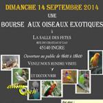 Bourse aux oiseaux à Ingré (45), le dimanche 14 septembre 2014