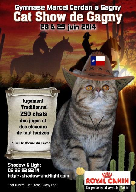 """Exposition féline """"Cat Show"""" à Gagny (93), du samedi 28 au dimanche 29 juin 2014"""