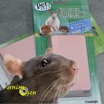 Accessoire : bloc minéral pour rongeurs et lapins Pet Plus (Flamingo)
