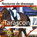 Nocturne de dressage à Tarascon (13), du samedi 02 au dimanche 03 août 2014