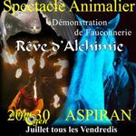 """Spectacle animalier """"Rêve d'Alchimie"""" à Aspiran (34), du 09 juillet au 31 août 2014"""