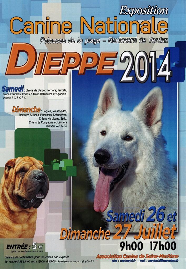 Exposition Canine Nationale à Dieppe (76), du samedi 26 au dimanche 27 juillet 2014