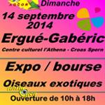 Bourse aux oiseaux à Ergué-Gaberic (29), le dimanche 14 septembre 2014