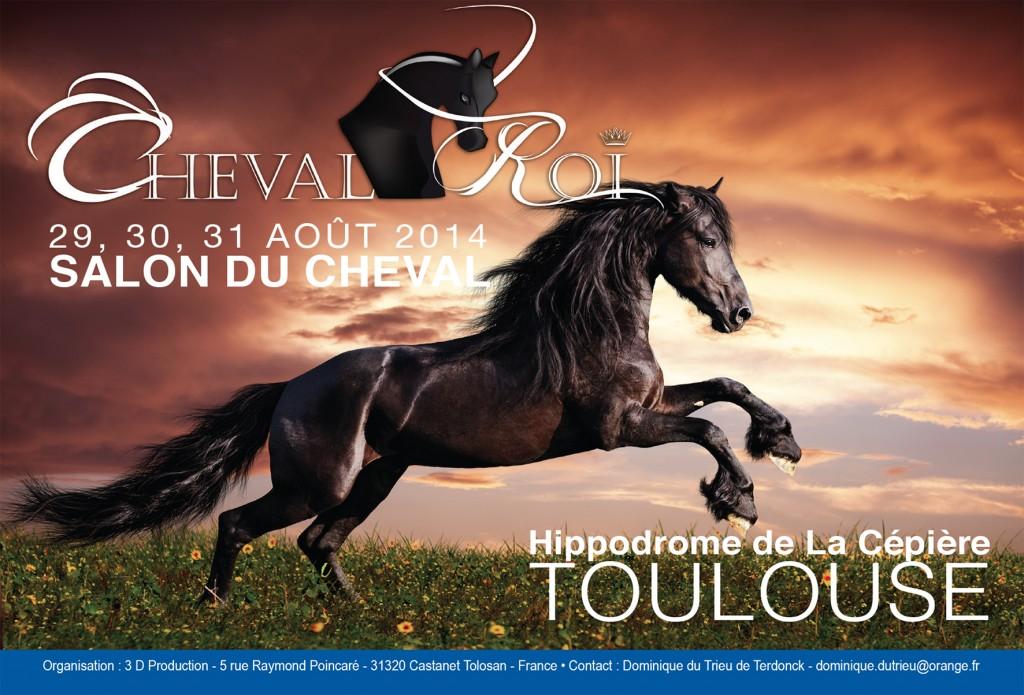 Salon du Cheval « Cheval Roi » à Toulouse (31), du vendredi29 au dimanche 31août 2014