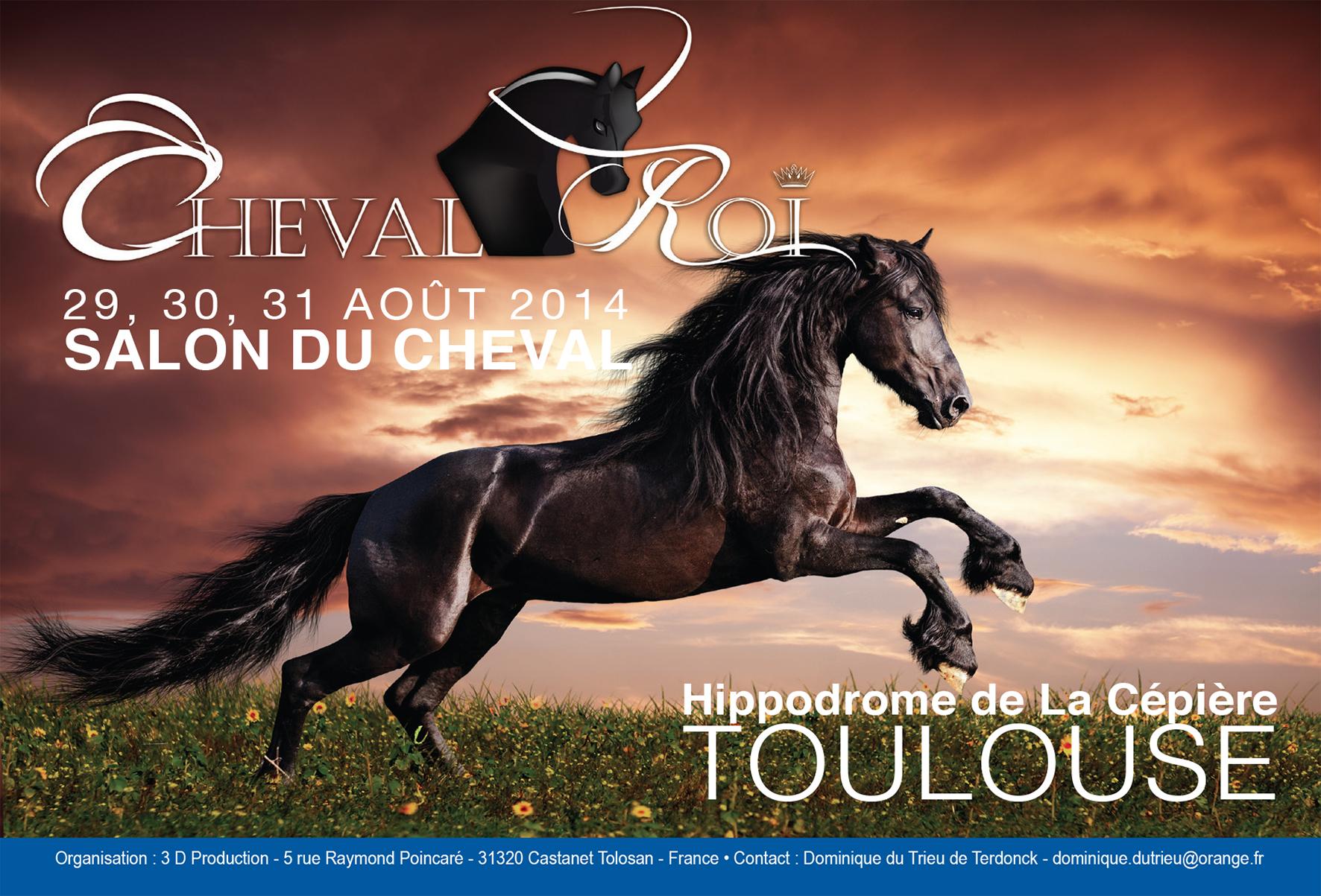 Salon du cheval cheval roi toulouse 31 du - Salon du cheval tarif ...
