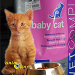 "Alimentation : croquettes pour chaton "" Baby Cat "" , Veto Complex (Virbac)"