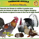 9 ème Exposition Avicole à Boué (02), du samedi 20 au dimanche 21 septembre 2014