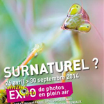 "Exposition de photographies ""Surnaturel ?"" à Saint Georges de Montaigu (85), du samedi 26 avril au mardi 30 septembre 2014"