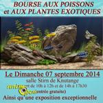 Bourse aux poissons et aux plantes exotiques à Knutange (57), le dimanche 07 septembre 2014