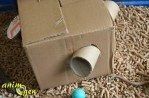 fabriquez une cabane en carton avec passage secret pour vos rongeurs animogen. Black Bedroom Furniture Sets. Home Design Ideas