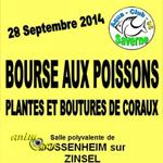 Bourse aux Poissons, plantes et boutures de coraux à Dossenheim-sur-Zinsel (67), le dimanche 28 septembre 2014