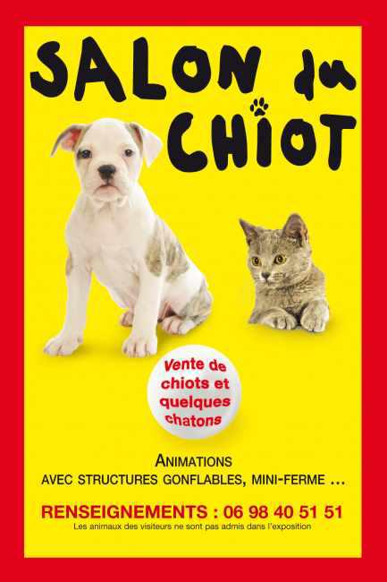 5 me salon du chiot metz 57 du samedi 23 au dimanche - Salon du chiot et du chaton ...