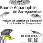 Bourse aux poissons à Sarreguemines (57), le dimanche 12 octobre 2014