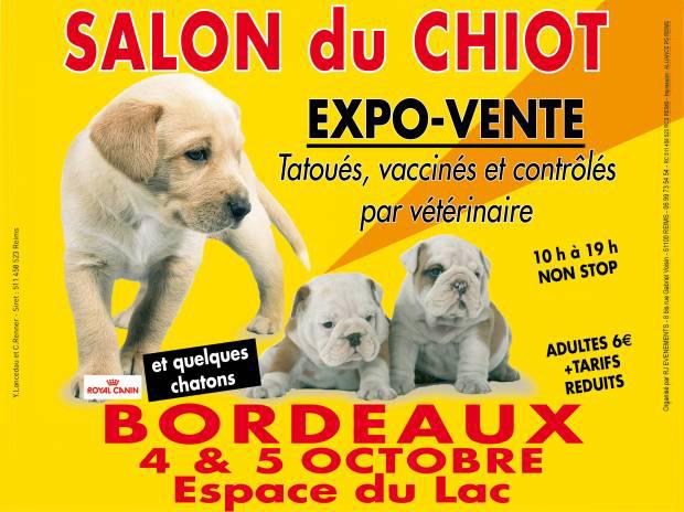 Salon du chiot bordeaux 33 du samedi 04 au dimanche for Salon du chiot chavagne 2017