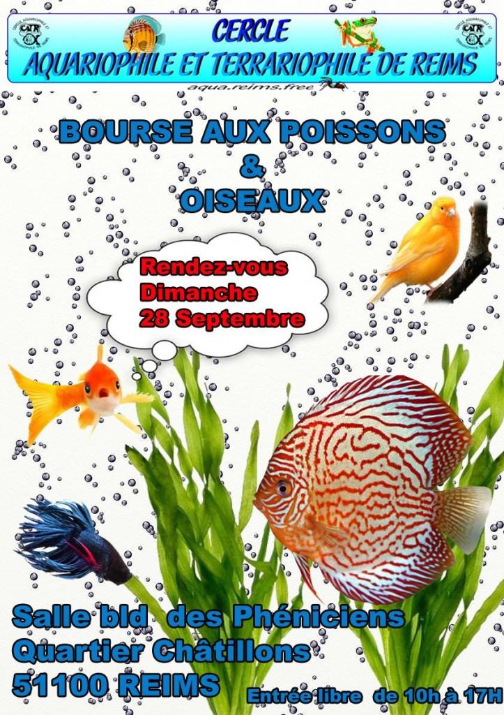 Bourse aux poissons et oiseaux et matériels à Reims (51), le dimanche 28 septembre 2014