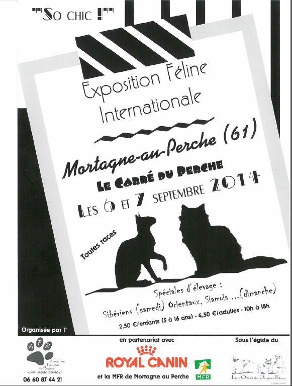 Exposition Féline Internationale à Mortagne au Perche (61), du samedi 06 au dimanche 07 septembre 2014
