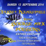 Journée aquariophile, Bourse aux Poissons à Marseille (13), le samedi 13 septembre 2014