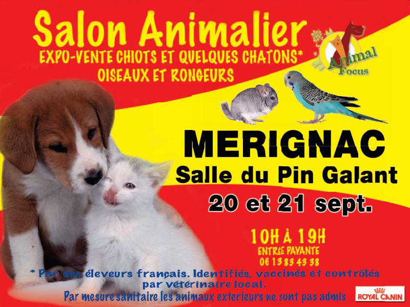 39 me salon animalier animal focus m rignac 33 du samedi 20 au dimanche 21 septembre. Black Bedroom Furniture Sets. Home Design Ideas
