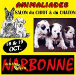 3 mes animaliades salon du chiot et du chaton narbonne - Salon du chiot et du chaton ...