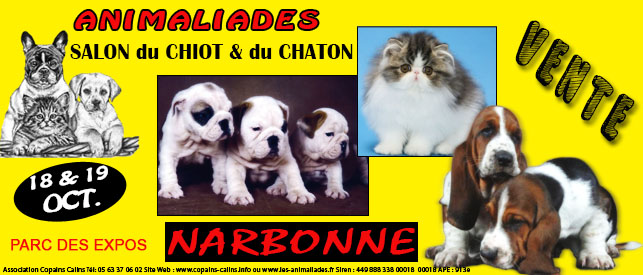 3 mes animaliades salon du chiot et du chaton narbonne 11 du samedi 18 au dimanche 19. Black Bedroom Furniture Sets. Home Design Ideas