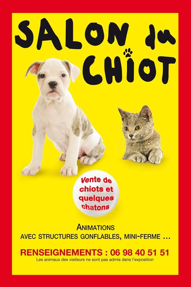Salon du chiot et de l animal de compagnie ch lons en champagne 51 du samedi 27 au dimanche - Salon chalons en champagne ...