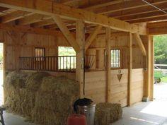 Equitation : loger son cheval