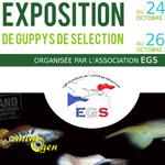 Exposition de guppys de sélection à Arcueil (94), du samedi 25 au dimanche 26 octobre 2014