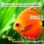 Bourse aux poissons en Arles (13), le dimanche 19 octobre 2014
