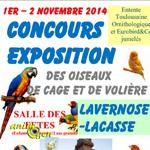 Concours- Exposition d'oiseaux de cage et de volière à Lavernose-Lacasse (31), du samedi 01 er au dimanche 02 novembre 2014