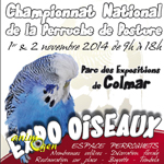 Expo Oiseaux, Championnat National de la Perruche de Posture à Colmar(68), du samedi 01 er au dimanche 02 novembre 2014