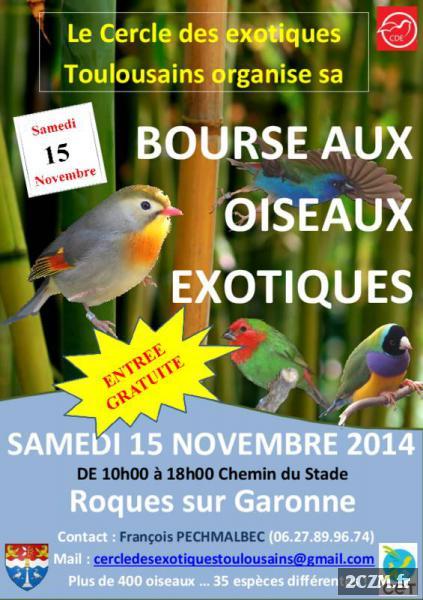 Bourse aux oiseaux exotiques à Roques sur Garonne (31), le samedi 15 novembre 2014