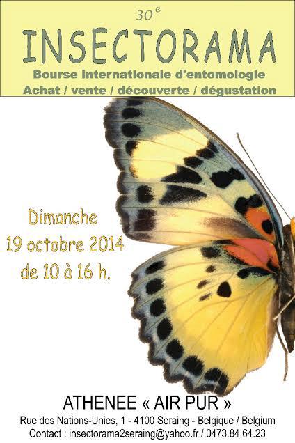 30 ème Bourse Internationale d'Entomologie « Insectorama » à Seraing (Belgique), le dimanche 19 octobre 2014