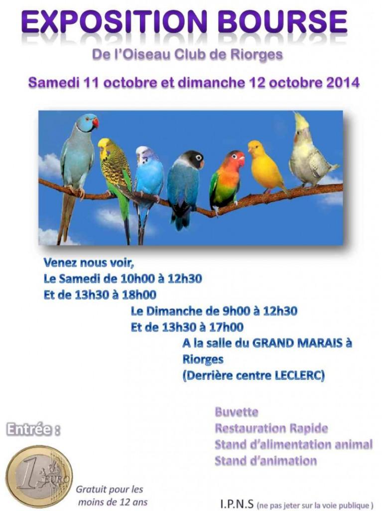 Exposition Bourse aux oiseaux à Riorges (42), du samedi 11 au dimanche 12 octobre 2014