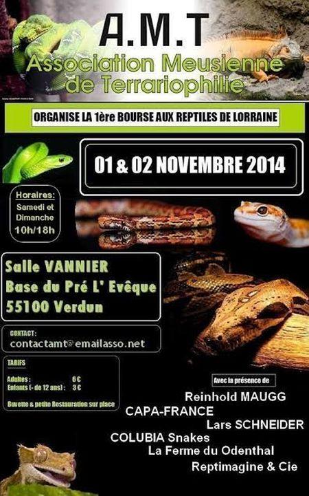 1 ère Bourse aux Reptiles de Lorraine à Verdun (55), du samedi 01 er au dimanche 02 novembre 2014