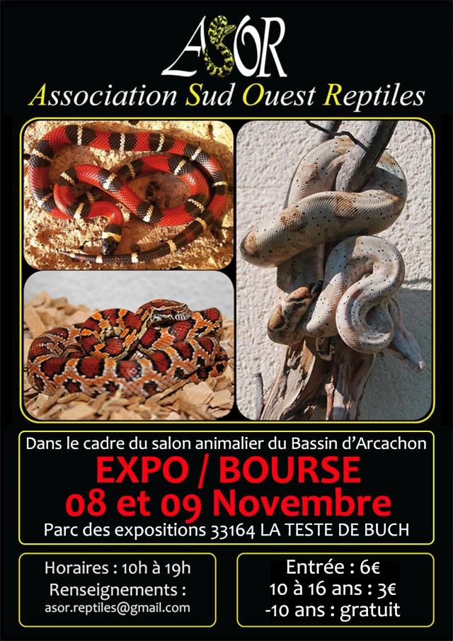 3 ème Exposition-Bourse aux reptiles à la Teste de Buch (33), du samedi 08 au dimanche 09 novembre 2014