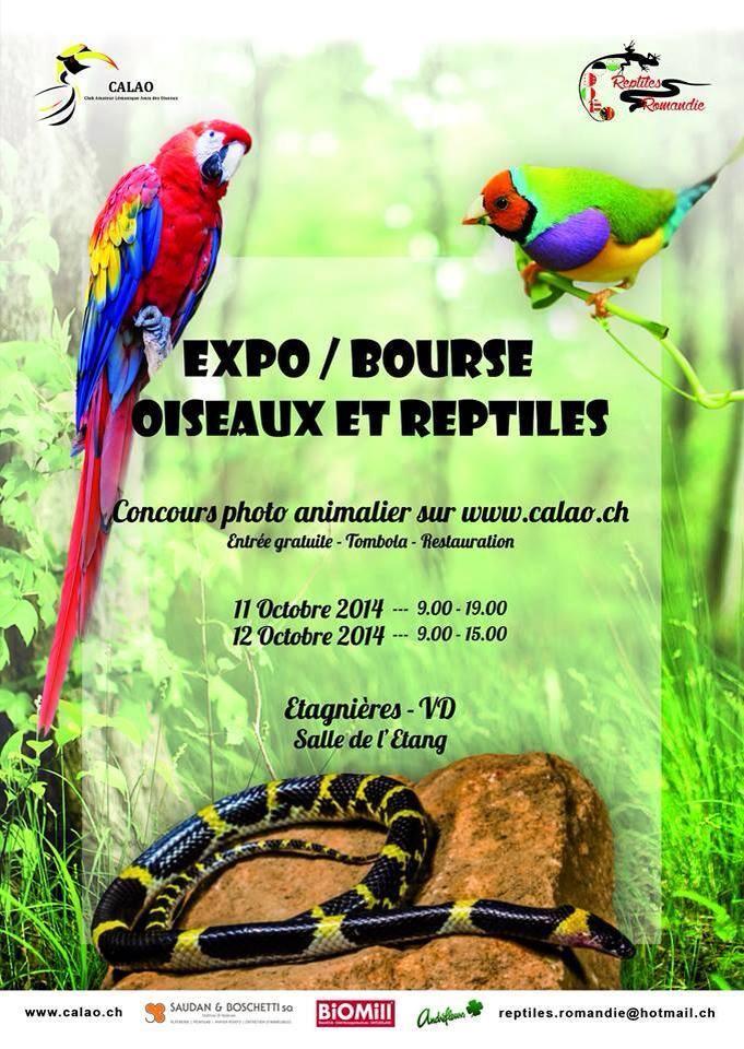 Expo-Bourse oiseaux et reptiles à Etagnières (Suisse), du samedi 11 au dimanche 12 octobre 2014