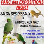 41 ème Salon des oiseaux et bourse aux NAC, reptiles, rongeurs à Niort (79), du samedi 08 au dimanche 09 novembre 2014