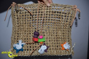 Jouet pour perroquet : Natural Wave Playground, Bird Life (Penn Plax)
