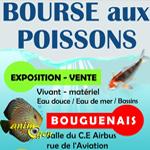 Bourse aux poissons à Bouguenais (44), le dimanche 19octobre 2014