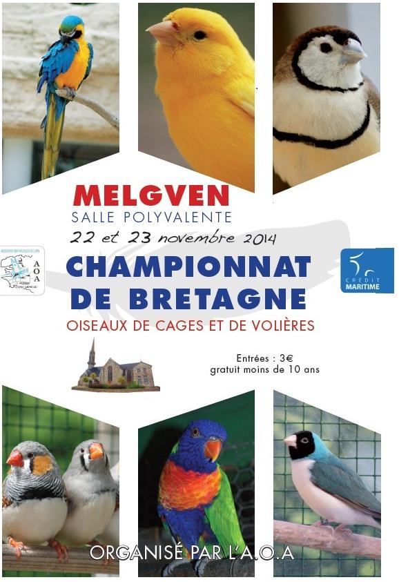 Championnat de Bretagne d'oiseaux de cages et de volières à Melgven (29), du samedi 22 au dimanche 23 novembre 2014