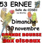 Bourse aux oiseaux à Ernée (53), le dimanche 30 novembre 2014
