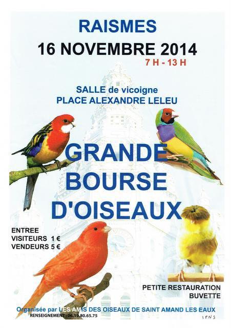 Grande Bourse d'Oiseaux à Raismes (59), le dimanche 16 novembre 2014